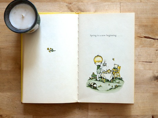 SpringBeginAnglund 2